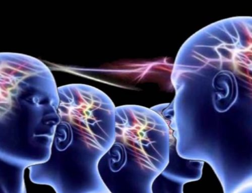 Parole-Comportamento e Vibrazione